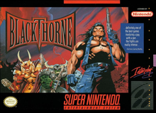 Box art for the game Blackthorne