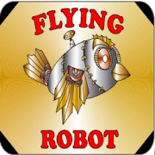 Box art for the game Flying Robot