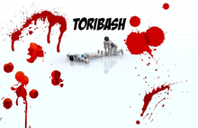 Box art for the game Toribash
